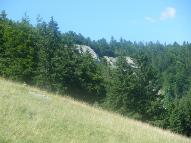 Location Bois D Amont - La roche du Creux Location Appartement Bois d'Amont